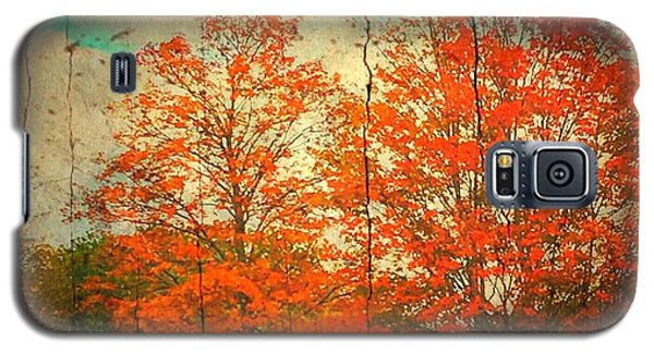 The Happiness Of Life By Taylor Coleridge Galaxy S5 Case