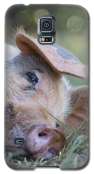 Thelma Lou Galaxy S5 Case
