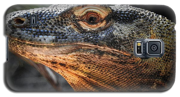 There Be Dragons, No. 5 Galaxy S5 Case
