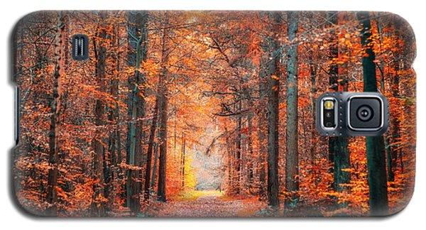 Thetford Forest Galaxy S5 Case