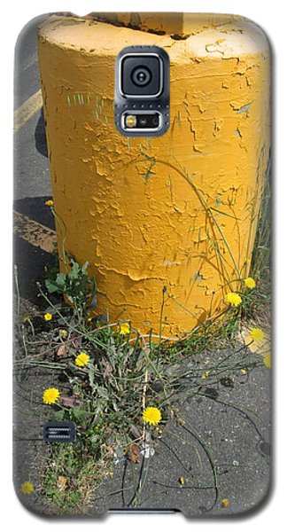 Galaxy S5 Case featuring the photograph They Are Still        Here by Marie Neder