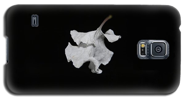 Galaxy S5 Case featuring the photograph Thin Air by Maggy Marsh