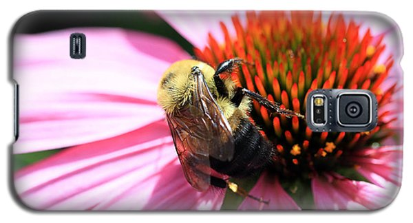 Galaxy S5 Case featuring the photograph Think Bees by Paula Guttilla