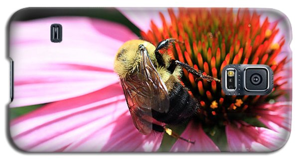 Think Bees Galaxy S5 Case by Paula Guttilla