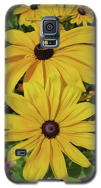 Galaxy S5 Case featuring the photograph Thirteen by David Chandler
