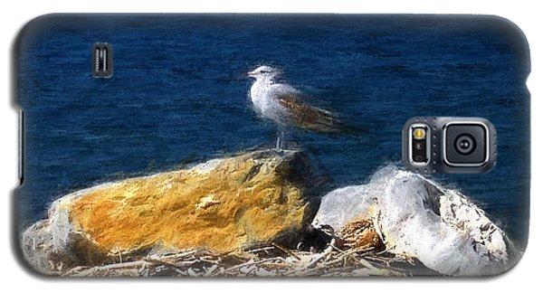This Gull Has Flown Galaxy S5 Case by John Freidenberg