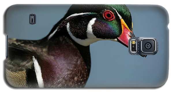 Galaxy S5 Case featuring the photograph This Is My Good Side by Elvira Butler