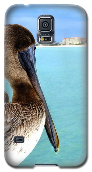 This Is My Town - Pelican At Clearwater Beach Florida  Galaxy S5 Case