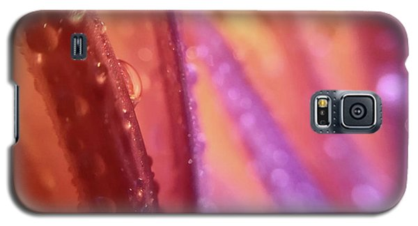 One Rainy Wish Galaxy S5 Case
