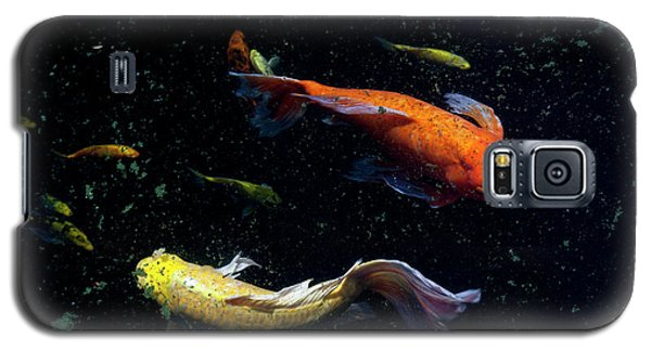 This Way Galaxy S5 Case