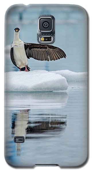Galaxy S5 Case featuring the photograph This Way by Tony Beck