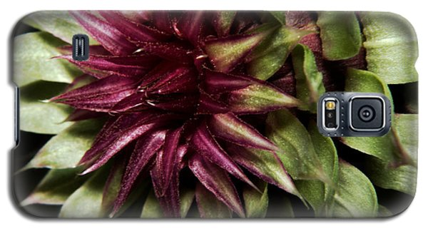 Galaxy S5 Case featuring the photograph Thistle 01 by Karen Musick