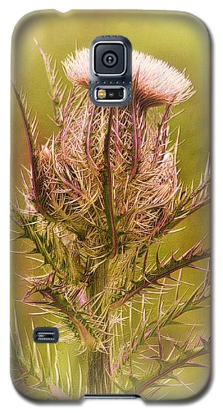 Thistle And Thorns Unfolding Galaxy S5 Case