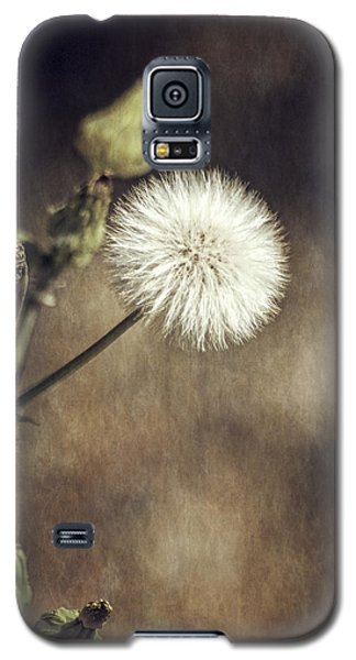 Thistle Galaxy S5 Case by Carolyn Marshall