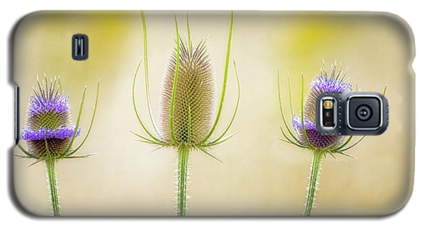Thistle Heads Galaxy S5 Case