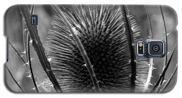 Thistle Galaxy S5 Case