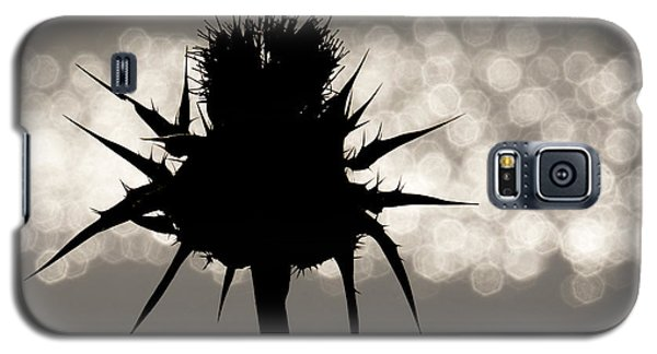 Thistle Silhouette - 365-11 Galaxy S5 Case by Inge Riis McDonald