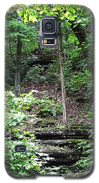 Thorncrown Chapel Setting In The Ozark Mountains Galaxy S5 Case by Lizi Beard-Ward