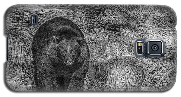 Thornton Creek Black Bear Galaxy S5 Case