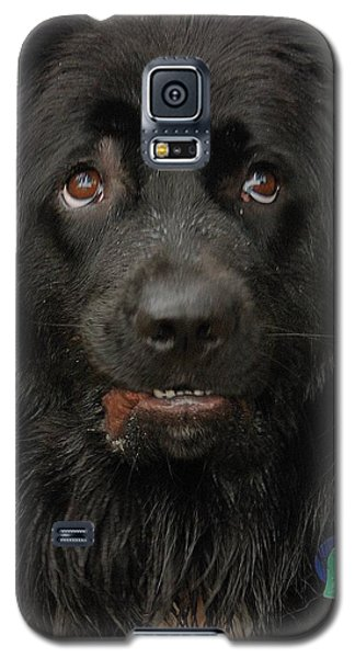 Galaxy S5 Case featuring the photograph Those Eyes by Debbie Stahre