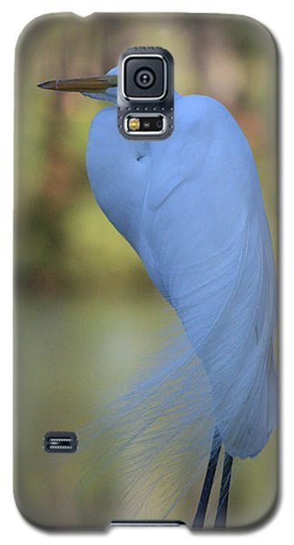 Thoughtful Heron Galaxy S5 Case