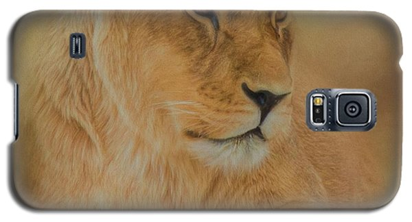 Thoughtful Lioness - Square Galaxy S5 Case