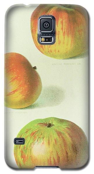 Three Apples Galaxy S5 Case