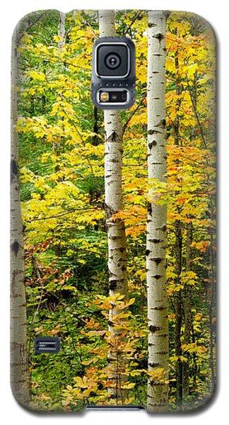 Three Birch Galaxy S5 Case