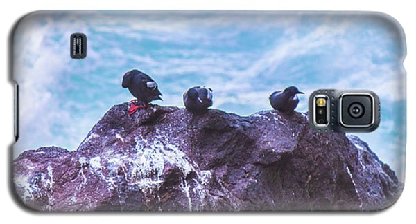 Galaxy S5 Case featuring the photograph Three Birds by Jonny D