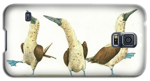 Three Blue Footed Boobies Galaxy S5 Case by Juan Bosco