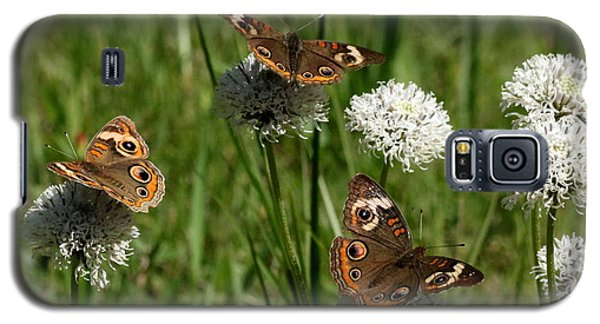 Three Buckeye Butterflies On Wildflowers Galaxy S5 Case