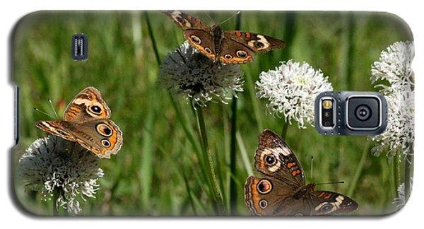 Three Buckeye Butterflies On Wildflowers Galaxy S5 Case
