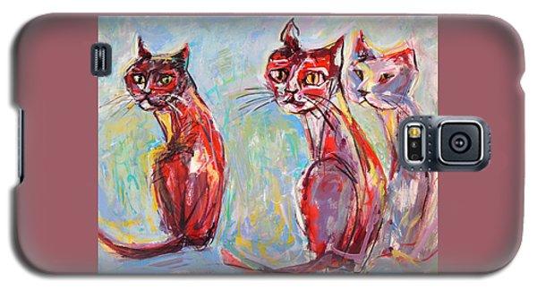 Three Cool Cats Galaxy S5 Case