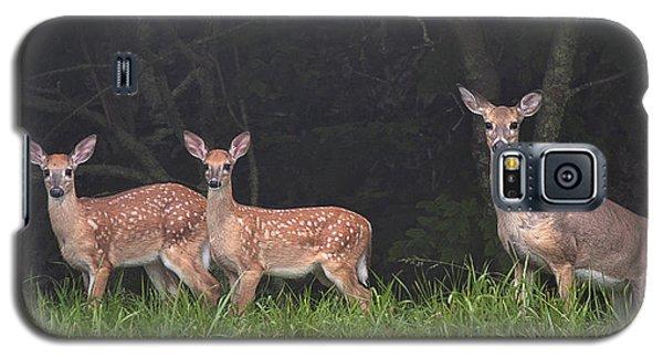 Three Does Galaxy S5 Case