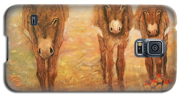 Three Donkeys Galaxy S5 Case