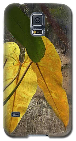 Galaxy S5 Case featuring the photograph Three Exotic Leaves by Viktor Savchenko