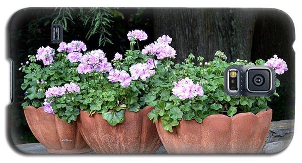 Galaxy S5 Case featuring the photograph Three Flower Pots by Deborah  Crew-Johnson