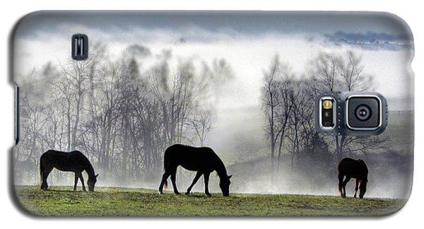 Three Horse Morning Galaxy S5 Case