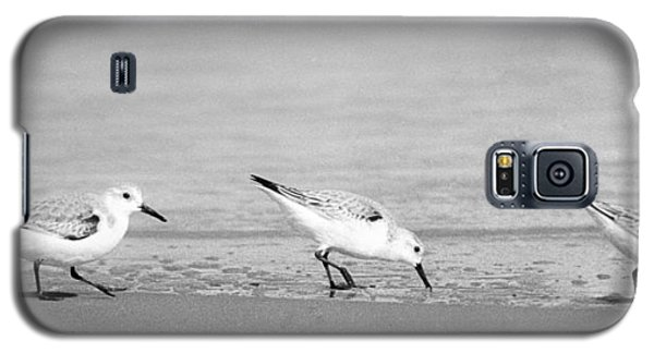 Three Hungry Little Guys Galaxy S5 Case