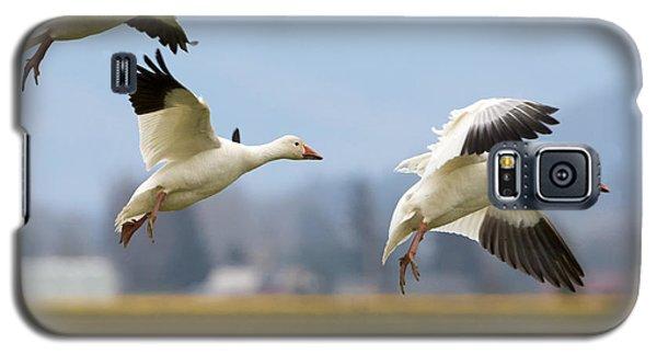 Three Landing Galaxy S5 Case by Mike Dawson