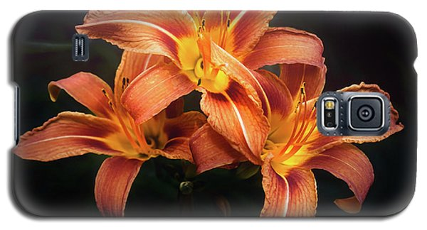 Lily Galaxy S5 Case - Three Lilies by Scott Norris
