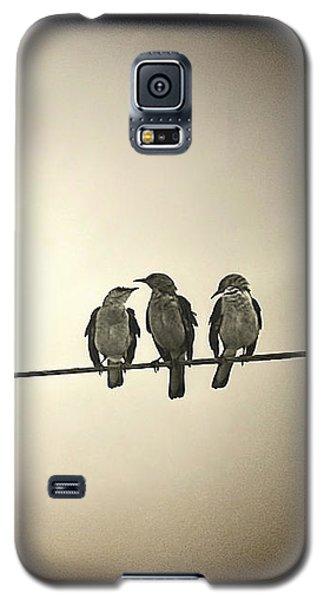 Three Little Birds Galaxy S5 Case