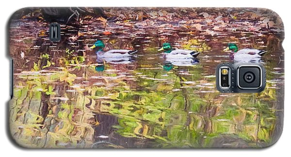 Three Mallards. Galaxy S5 Case