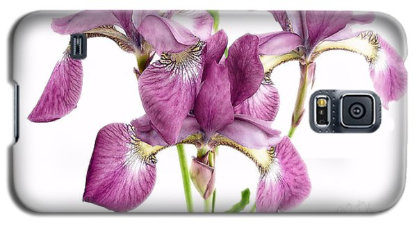 Three Mauve Japanese Irises Galaxy S5 Case