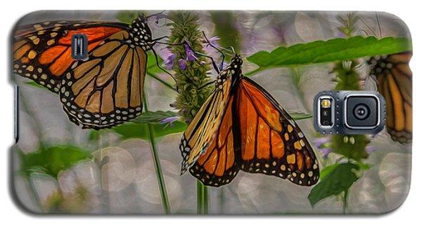 Three Monarch Butterfly Galaxy S5 Case