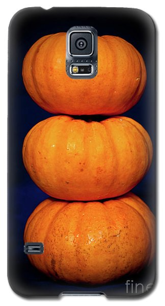 Galaxy S5 Case featuring the photograph Three Pumpkins by Yurix Sardinelly