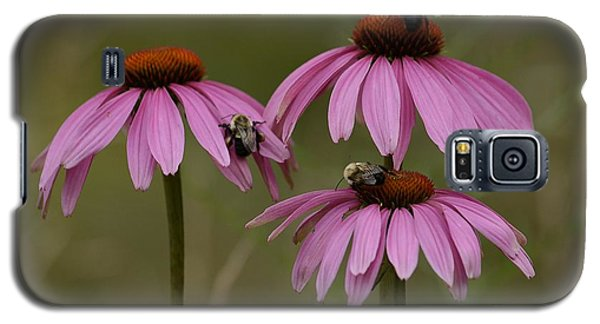 Galaxy S5 Case featuring the photograph Three by Randy Bodkins