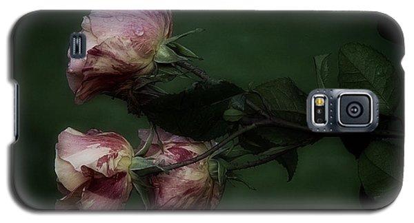 Three Romantic Roses Galaxy S5 Case