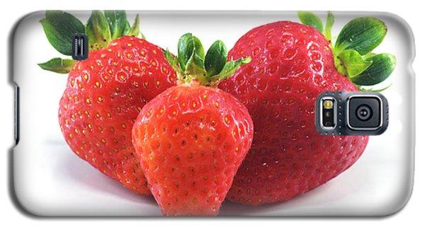 Three Strawberries Galaxy S5 Case