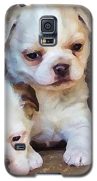 Three Sweeties Galaxy S5 Case